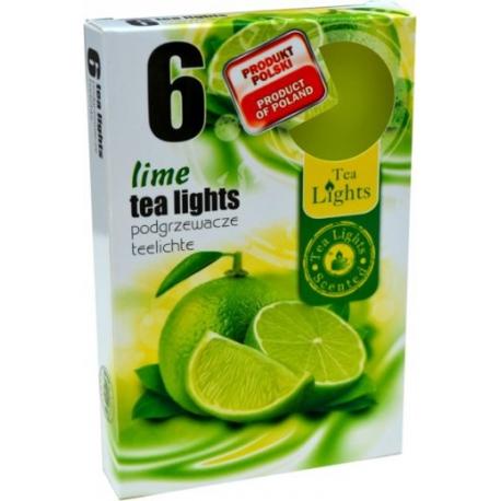 Čajové sviečky - Lime