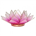 Svietnik - Lotos ružový