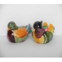 Mandarinské kačičky - collor